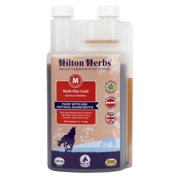 Hilton Herbs Multi-Flex Gold 1l